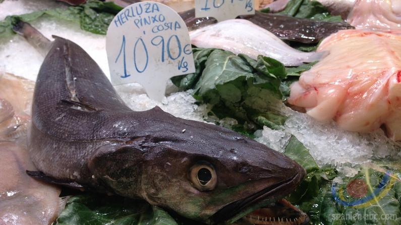 Kleines Wörterbuch für den Fischeinkauf
