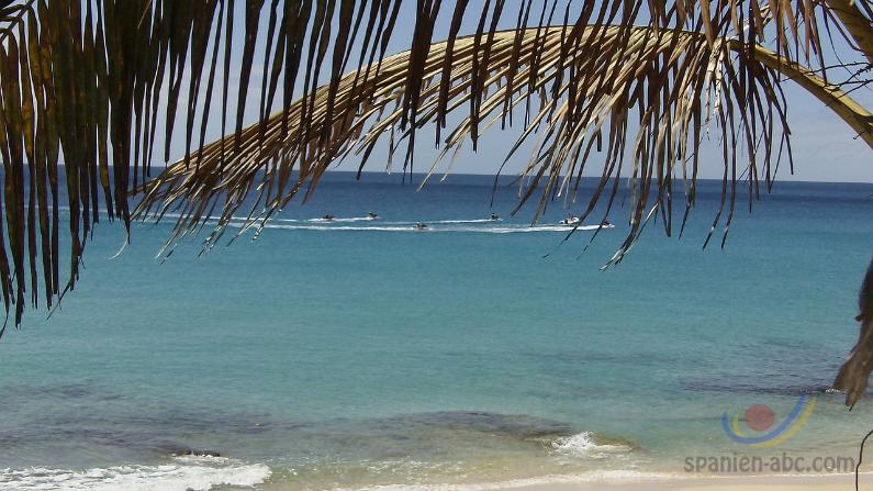 Karibikgefühle auf Fuerteventura