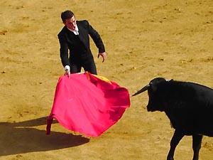 Stierkampf in Katalonien wurde verboten !